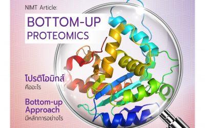 Bottom-up Proteomics